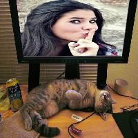 foto-no-monitor-do-computador