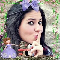 montagens-de-foto-online-com-princesinha-sofia-disney
