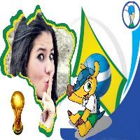 fotomontagem-mapa-brasil-e-fuleco-mascote-copa-do-mundo