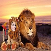 montagem-de-fotos-online-leao-rei-da-selva