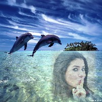 efeito-para-fotos-com-golfinhos
