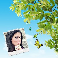 efeito-em-fotos-com-borboletas
