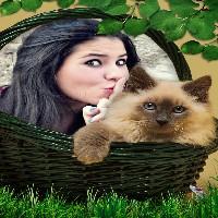 lindissima-e-divertida-capa-para-foto-gato-na-cesta