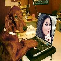 o-dog-intelectual