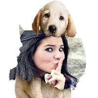 moldura-dog