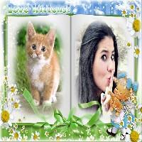 moldura-amo-gatos