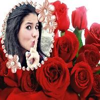 rosas-vermelhas-moldura