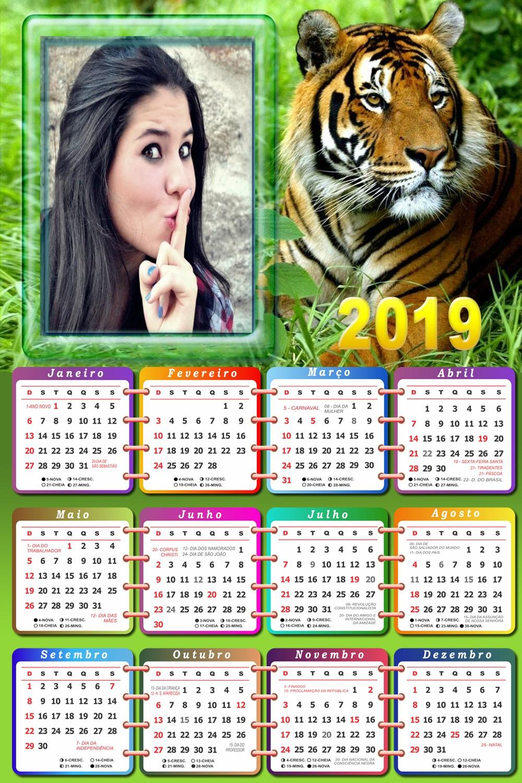 Calendario Tiger 2019.Montagem De Fotos Calendario Fotomontagem Calendario