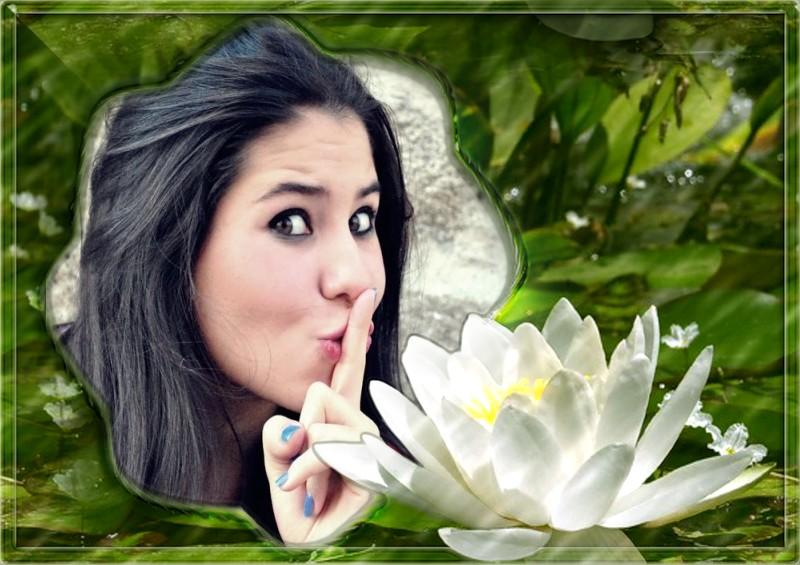 moldura-flor-de-lotus