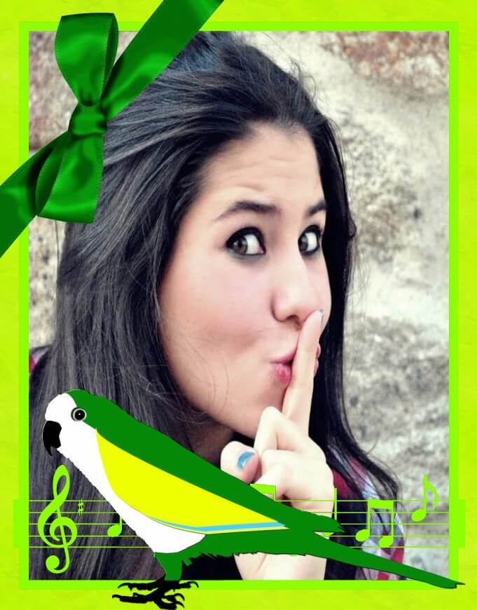 montagem-de-fotos-com-papagai-e-notas-musicais