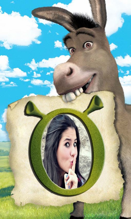 o-burrinho-do-sherk