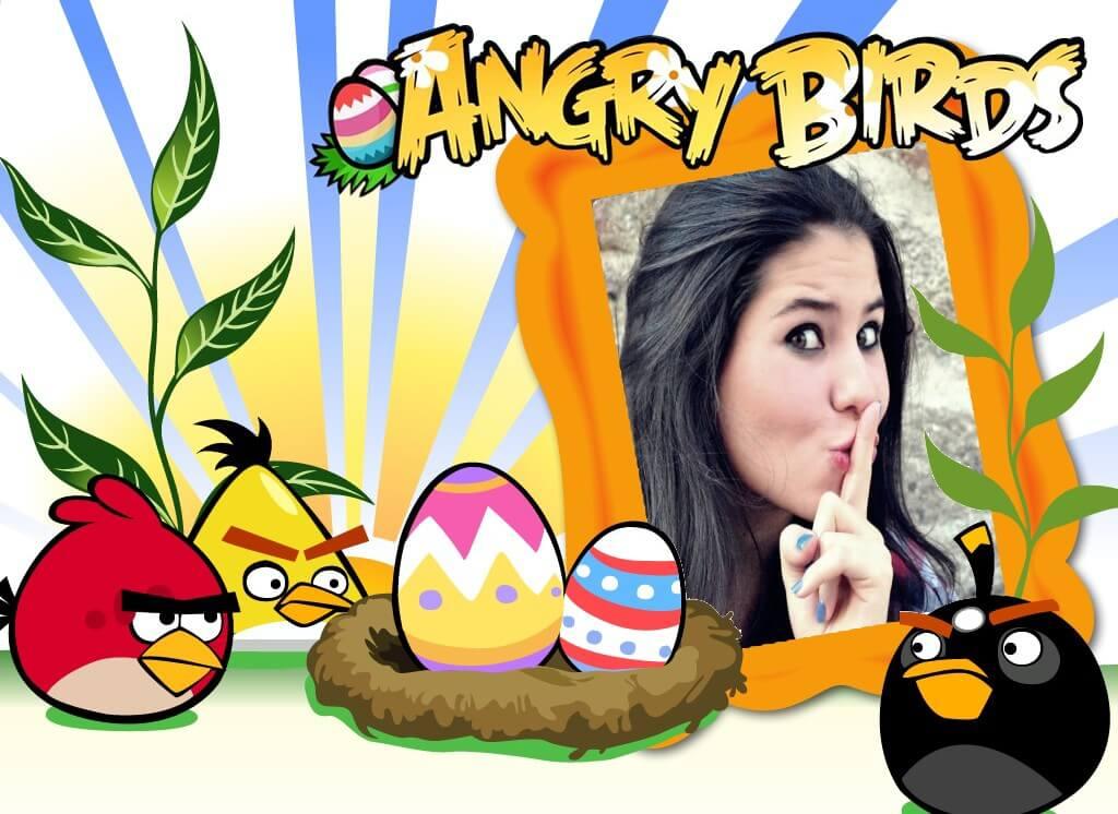 montagem-angry-birds