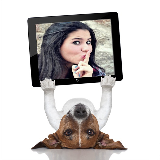 fotomontagem-cachorrinho-com-tablet