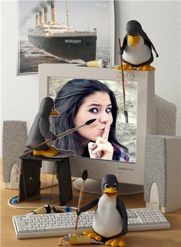 no-computador-dos-pinguins