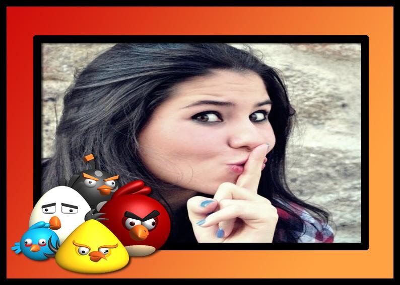 moldura-jogo-do-angry-birds-3d